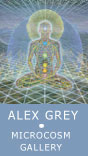 Alex Grey - Mission of Art and Chapel of Sacred Mirrors (COSM)